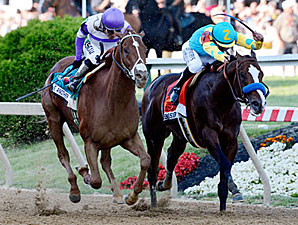 I'll Have Another and Bodemeister duel in the Preakness stretch.