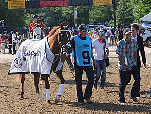 I'll Have Another walks to the saddling paddock for Preakness 137.