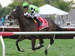 Lochte wins the Gulfstream Park Turf Handicap.
