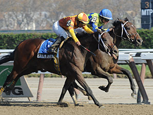 Meeker Avenue wins a division of the New York Stallion Stakes series at Aqueduct.