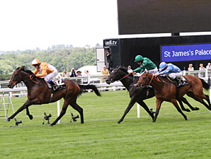 Most Improved wins the 2012 St. James's Palace Stakes.