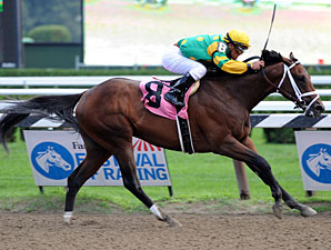 Palace Malice is Curlin's first North American winner.