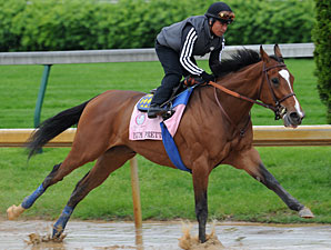 Plum Pretty works at Churchill Downs 5/2/2011.