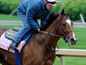 Plum Pretty works at Churchill Downs 5/4/2011.