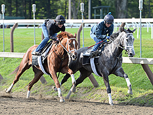 Princess of Sylmar at Saratoga.