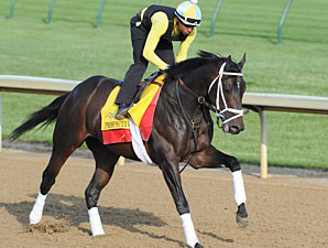 Prospective on the track at Churchill Downs 4/24/2012.