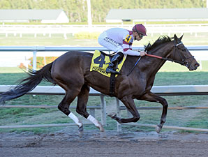 Royal Delta running in the Sabin Stakes.