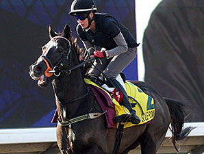 Sole Power in Hong Kong Dec. 13, 2014.