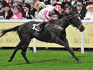 Sole Power wins the King Stand Stakes.