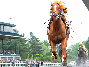 Wise Dan in the Ben Ali Stakes.