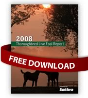 Thoroughbred Live Foal Report Free Download